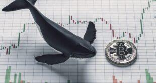 Ballena mueve $1.16 mil millones en BTC