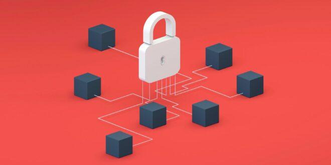 SpiderSilk, startup de ciberseguridad, recibe 2.25 mdd