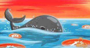 ballenas altcoins